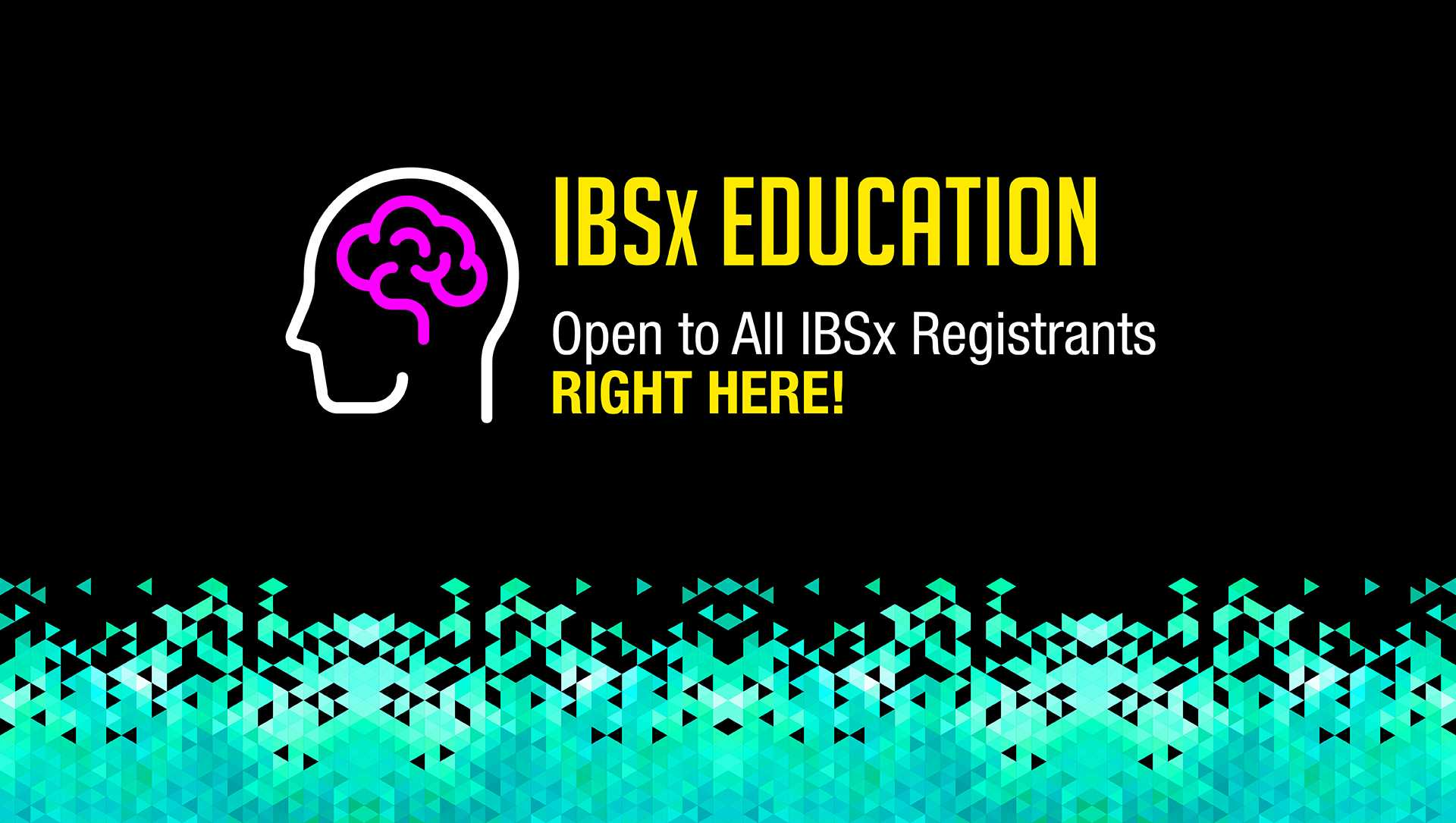 IBSx Education